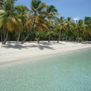 St. Vincent & Grenadinerne