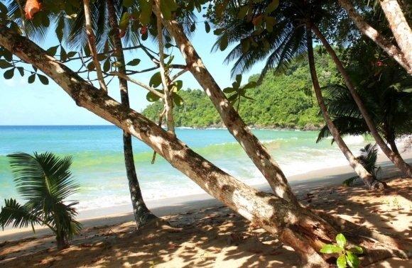 Trinidad & Tobago