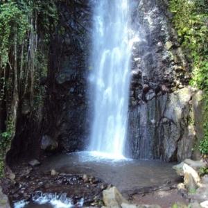 Guadeloupe og Dominica